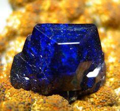 Fine gem quality Azurite on bubbly golden Limonite matrix. From Bisbee, Cochise Co., Arizona