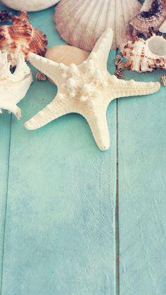 Shells and starfish small fresh background Strand Wallpaper, Ocean Wallpaper, Summer Wallpaper, Cute Wallpaper Backgrounds, Cute Wallpapers, Cellphone Wallpaper, Iphone Wallpaper, Beach Aesthetic, Am Meer