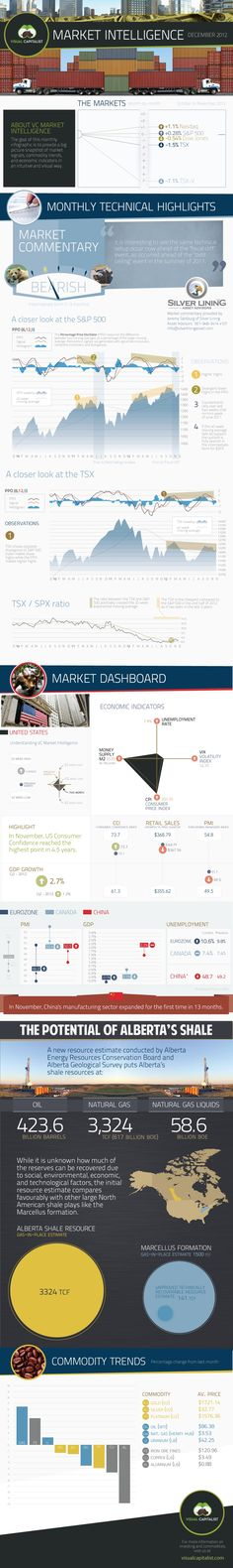 VC Market Intelligence is a new monthly infographic from Visual Capitalist that summarizes a macro view of the last month of markets