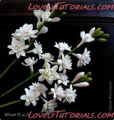 http://www.lovelytutorials.com/forum/showthread.php?s=4d3727dd32f0791cbc0a68eceb068968&t=5204