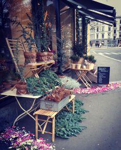 Hverdager er de flotteste, de er fulle av eventyr! 💛🌿 #hverdag #jul #advent #oslo #blomsterbutikk #bislett #frkfloodblomster #inspo #inspohome #velkommen