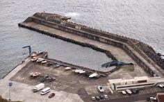 PORTO DA CALHETA: Baleia Encalha no Porto da Calheta