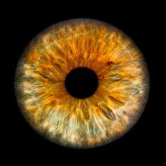 Eye / Ojo / Oeil