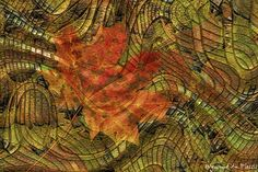 FINE ART PRINTS - Home decor - Interior design - Autumn colours - Abstract photo art Creative Photography, Art Photography, Photo Art, Wall Art Prints, Fine Art Prints, Art Prints Online, Abstract Photos, Bird Art, Decoration