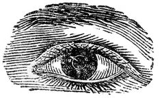 Antique Images - Human Eyes - The Graphics Fairy