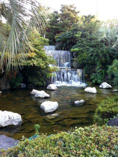 Jeju Island,  South Korea, One of the 6 waterfall's we saw during our visit there