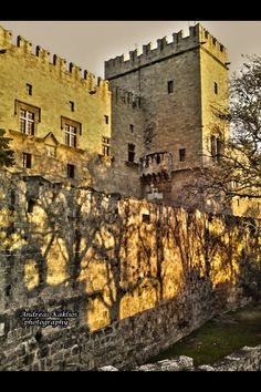 Shadows in magister castle