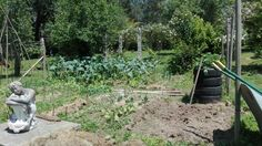 Horta no xardín