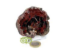 Versteend hout schijfje VST-HSCH-RM-3-95 | Webshop Danielle Forrer | Mineralen | Klankschalen | Koshi shanti's | Tingsha | Inzichtkaarten | Pendels | etc | Wieringerwerf