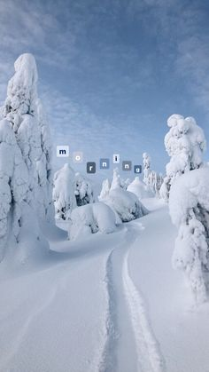 Sky Aesthetic, Flower Aesthetic, Travel Aesthetic, Book Instagram, Instagram Story Ideas, Ski Vacation, Best Iphone Wallpapers, Snowboarding, Skiing
