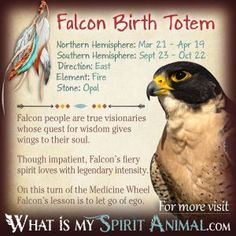 Falcon Totem (Red Tailed Hawk)