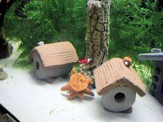 Garnelen Röhre   * Wumba *   - Höhle  - Deko - Ton - Aquarium