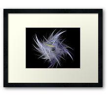 Feather Fractal Framed Print
