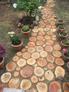 a beautiful walkway will transform your backyard, will direct the garden wanderings, lead to important points from your garden and make it easier to control and organize. Garden Stones, Garden Paths, Herb Garden, Amazing Gardens, Beautiful Gardens, Big Leaf Plants, Mosaic Walkway, Pathways, Backyard Landscaping