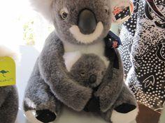 A squishy Koala