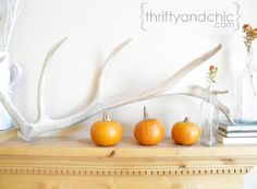 Simple fall mantel using mini pumpkins and a faux antler. Halloween Party Themes, Fall Halloween, Orange Accessories, Fall Kitchen Decor, Thanksgiving Diy, Mini Pumpkins, Getting Cozy, Autumn Inspiration, Tis The Season