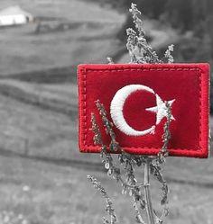 YİĞİTÇE BAYRAK İÇİN CAN VERİP ŞEHİT OLANLARIN VATANIDIR TÜRKİYE. Cute Cat Wallpaper, Full Hd Wallpaper, Galaxy Wallpaper, Ekg Tattoo, Army Video, Turkish Military, Turkish Language, Today Episode, Ottoman Empire