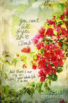 Motivational quote with beautiful bougainvillea. If I lived in a southern climate I'd have these gorgeous flowers growing all around my house - love them!  This is part of my Pink for the Cure Gallery to help raise money for a cure. Please consider buying my art this month to help out and share with your friends and followers. Thanks!
