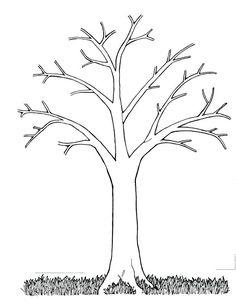 apple tree without leaves coloring pages ideen f r kinder pinterest vorlagen baum und herbst. Black Bedroom Furniture Sets. Home Design Ideas