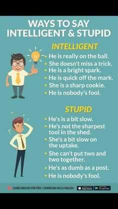 ways to say 'Intelligent' and 'stupid' in English. D'autres manières de dire intelligent et stupide en anglais. Learn English Grammar, English Writing Skills, English Vocabulary Words, English Phrases, Learn English Words, English Language Learning, English Study, English Lessons, Teaching English