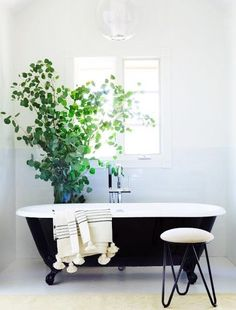 Incorporate an antique bathtub into a minimalism bathroom design. Add a hint of green for an even more fresh look - Luxury Interior Design Bathroom Trends, Bathroom Interior, Bathroom Inspiration, Interior Inspiration, Black Tub, Black Bathtub, Black White, Vintage Tub, Sweet Home