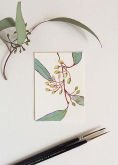 Miniature watercolour painting of the Eucalyptus branch by Zoya Makarova (ACEO 3.5x2.5 inches)
