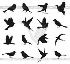 Silhouettes of birds - vector EPS