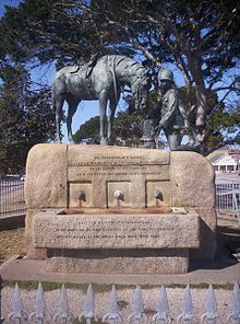 Port Elizabeth - Wikipedia, the free encyclopedia South Africa. This statue & horse trough was erected in  1905 in memory of the 300,000 British horses who served in the Second Boer War 1899-1902.