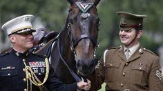 Paard postuum geëerd voor heldendaden in Koreaanse Oorlog | NOS