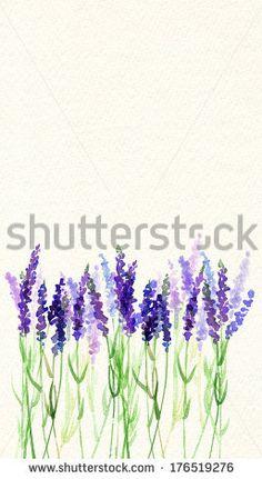 Lavande Aquarelle Photos et images de stock | Shutterstock