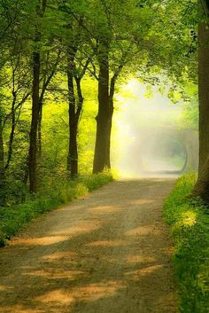 Towpath Trail/dirt road, Ohio
