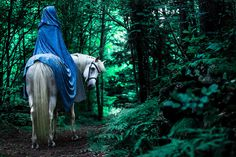 saneves-fan: m-e-d-i-e-v-a-l-d-r-e-a-m-s: Magical scene in a Swedish forest! By: Photographer Miina Anahita Found: Faerie Magazine Via: Medieval Dreams Lovely Story Inspiration, Character Inspiration, Medieval Horse, Medieval Princess, Foto Pose, Middle Earth, Beautiful Horses, Pretty Horses, Legend Of Zelda
