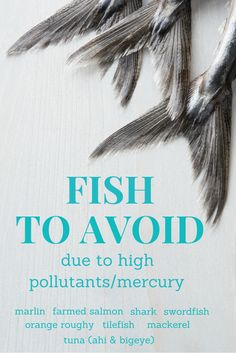 Some fish contain contaminants that can harm your health.  Tap on this list for ones to avoid at your next shopping trip to keep your choices healhty ones. (The HealthMinded.com)  #health #cooking