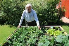 Magaságy Garden Projects, Raised Garden Beds, Balcony Garden, Plants, Garden, Outdoor, Outdoor Structures, Flowers, Gardening Tips