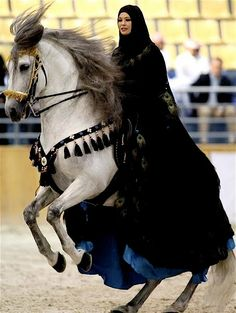 arabian,,, how graceful the move of the horse and how poised is the lady on the horse's back :)