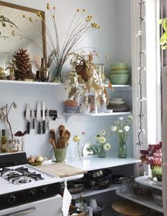 kitchen plants | kitchen-with-plants