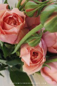 Spray Rose Romantik Antik