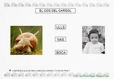 CARGOL projecte P3 - petitmón 1 - Álbumes web de Picasa Conte, Projects To Try, Album, Nature, Art, School, Log Projects, Photos, Animales