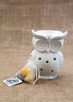 Owlchemy-snowy-owl-electric-wax-warmer