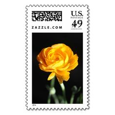 Add stamps to all your different types of stationery! Find rubber stamps and self-inking stamps at Zazzle today! Custom Postage Stamps, Self Inking Stamps, Ranunculus, Address Labels, Photograph, Stationery, Yellow, Flowers, Photography