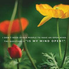 """I don't need other people to have an open mind. The question is """"Is my mind open?"""" ~ Byron Katie (@ByronKatie) 
