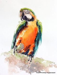 Macaw Parrot bird , Bird watercolor painting, Bird art, watercolor, Art print size 8X10 inch for room décor and special gift No.190