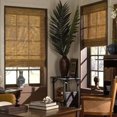 These natural woven wood shades have limited control options and no privacy liner options as other woven woods while providing the same light filtering eco-friendly solution to covering your windows. Color: Winthrop Camel