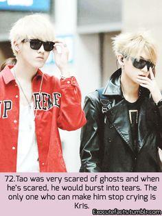 EXO FACT ♡ #KPOP - 72