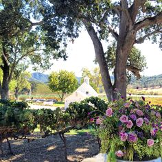 Beautiful white barn at our Paso Robles Vineyard - thanks adornments for the florals xo
