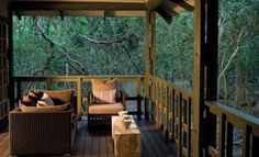Phinda Forest Lodge is set deep in the heart of the rare Dry Sand Forest. Rooms are air conditioned with private viewing decks. Landscaping With Boulders, Safari Holidays, Private Viewing, Private Games, African Safari, African Animals, Kwazulu Natal, Outdoor Retreat, Game Reserve