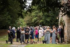 Wedding guests coming out of Maidwell church in Northampton Farm Wedding, Wedding Ceremony, Photography Portfolio, Dolores Park, Wedding Photography, Weddings, Dogs, Travel, Image