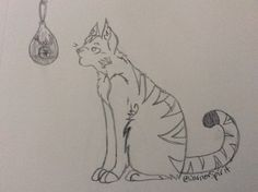 A sketch of ma cat and ma airplant XD -WarriorSpirit-
