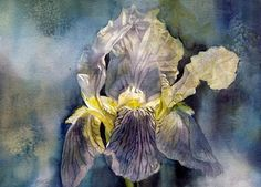 Iris In The Mist Painting by Alfred Ng