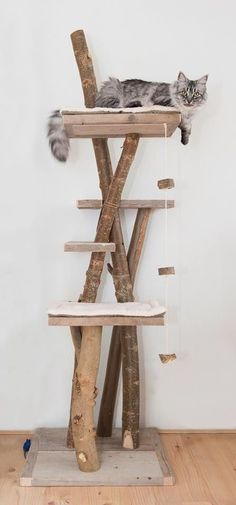 3 Qualified Cool Tips: Kitty Cat House chic cat tree.Cat Aesthetic Girl cat ideas for home.Beautiful Cat And Dogs. Bb Chat, Diy Cat Tree, Cat Run, Cat Towers, Cat Shelves, Cat Tree House, Cat Playground, Cat Condo, Pet Furniture